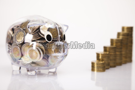 business concept pig bank and money