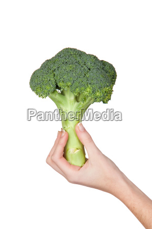 hand with a bouquet of broccoli