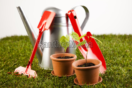 watering can and gardening tools sitting