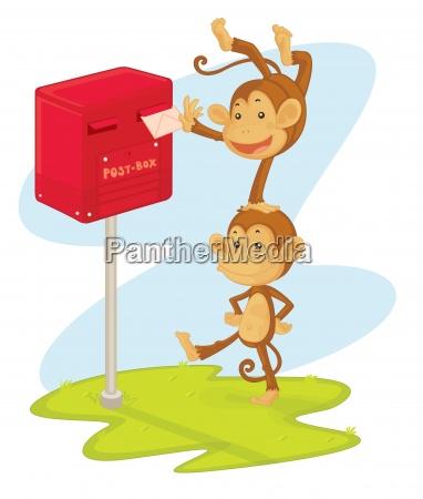 monkeys posting a letter