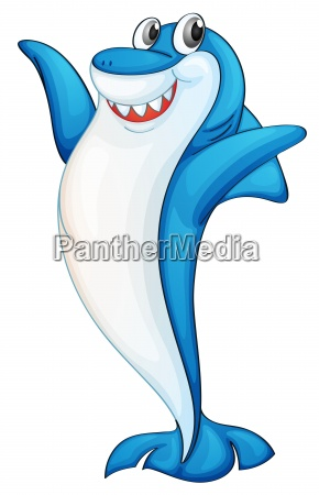 comical shark illustration