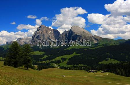 mountains, dolomites, alps, alp, summer, summerly - 9118142