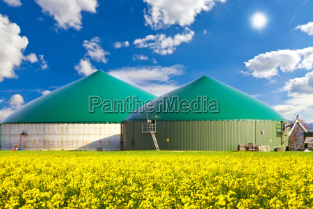 biogas plant in the rapeseed field