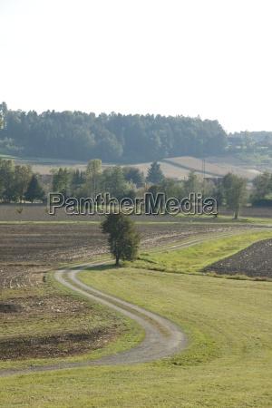 curved path through a landscape