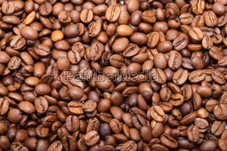 coffee beans close up isolated on