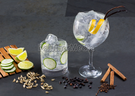 gin tonic cocktail with lima cucumber