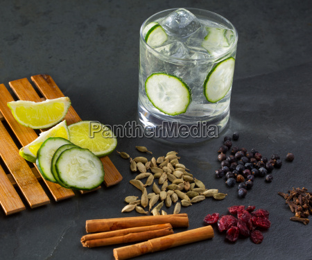 gin tonic cocktail with cucumber cloves