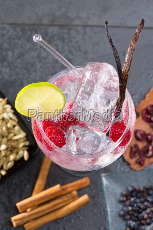 gin tonic cocktail with vanilla raspberry