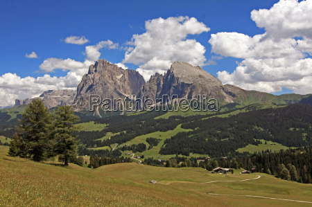 dolomites alps woods clouds
