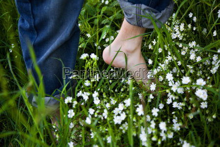 bare feet on green grass and