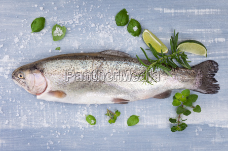 delicious trout seafood