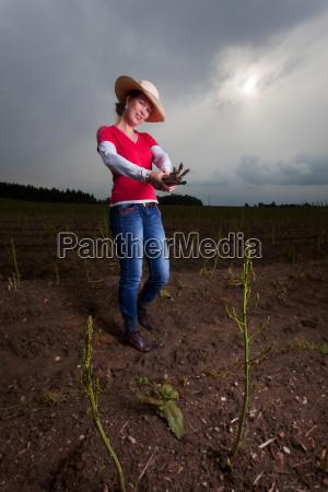 asparagus farmer on a field