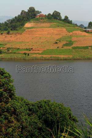 farm fields on a hill