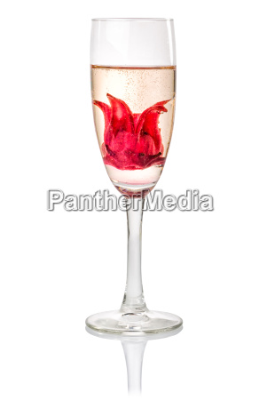 champagne cocktail with hibiscus flower