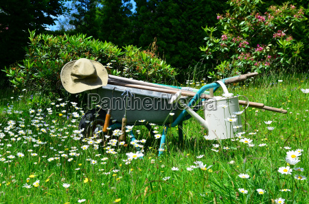gardening tools flower meadow