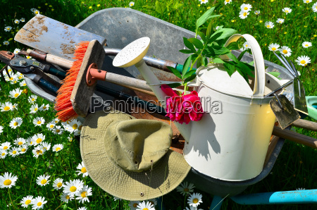 garden tools flower meadow
