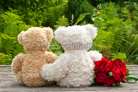 roses rose red green teddy bear