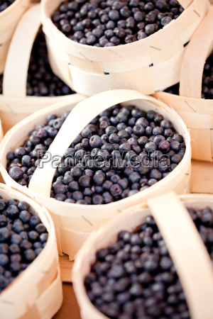 fresh sweet blueberries blueberries macro