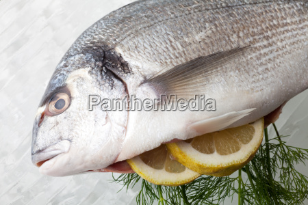 raw bream on crushed ice