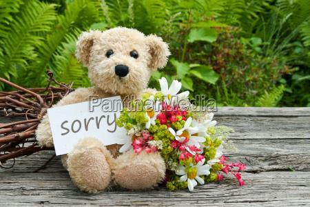 sorry excuse apology sad daisy daisies