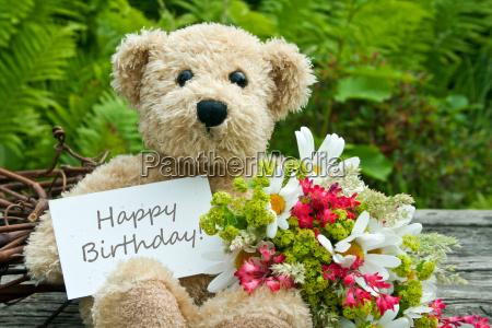 congratulate congratulations best wishes birthday happy