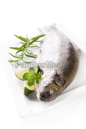 delicious trout