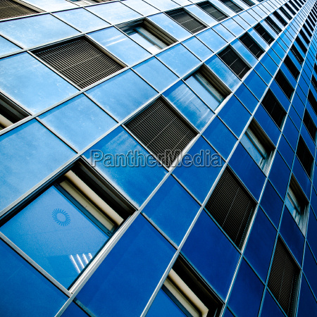 rows of windows on a blue