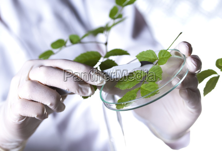 biotechnology chemical laboratory glassware