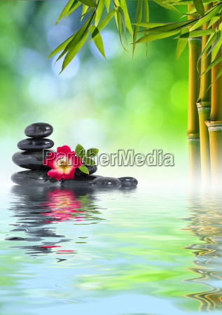 rose stones and bamboo on water