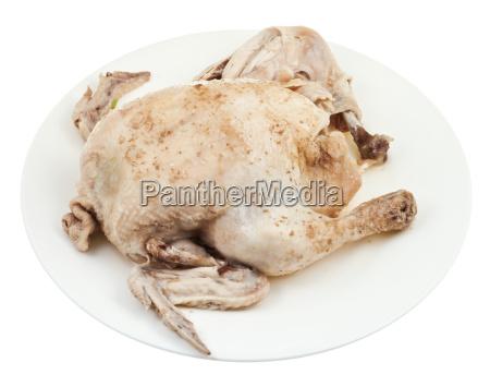 mad levnedsmiddel naeringsmiddel fodevare fritlagt fugl
