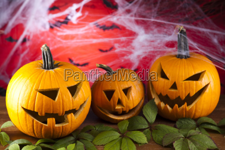 halloween background with web and