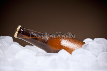 the cooler beer