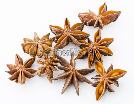 chinese aniseed isolated on white