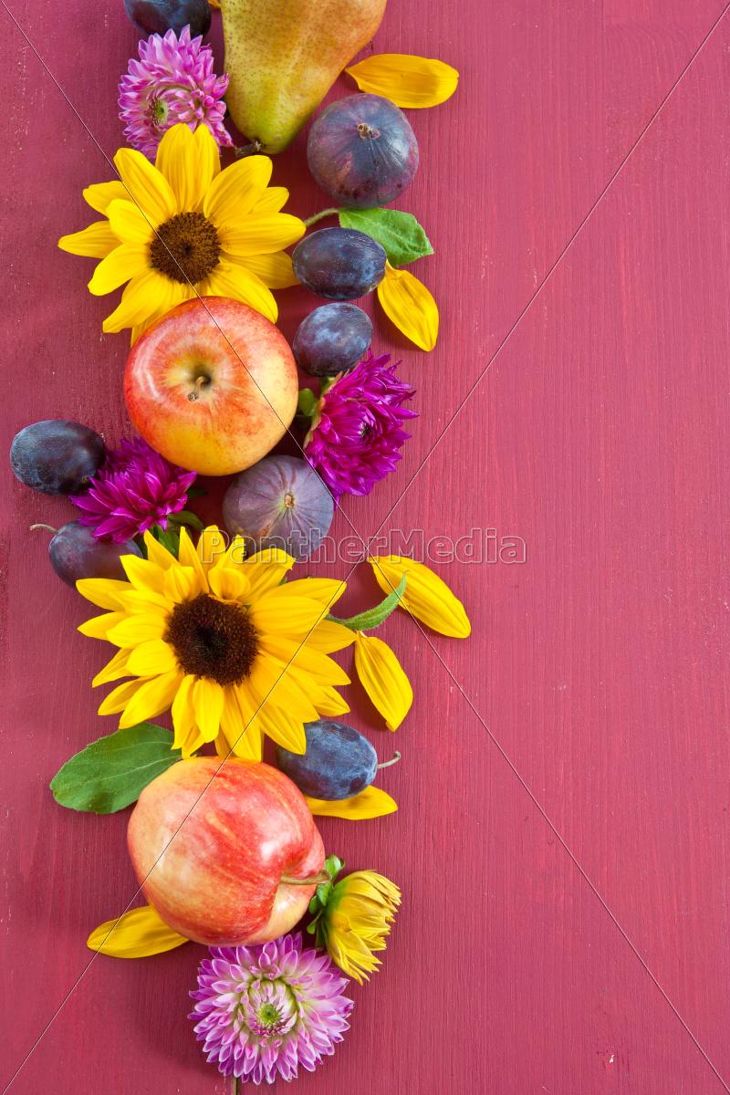 background, with, herbstfruechten - 10009714