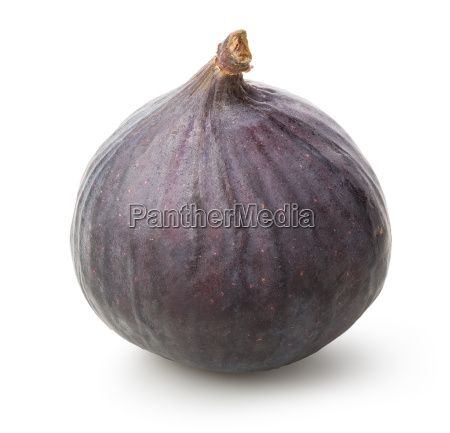one figs