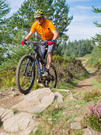 mountain, biker, riding, trails, in, wales - 10080534