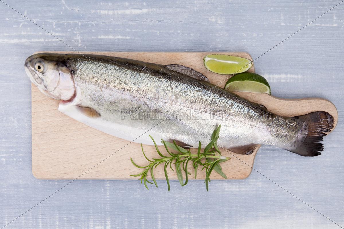 fresh, trout. - 10101776