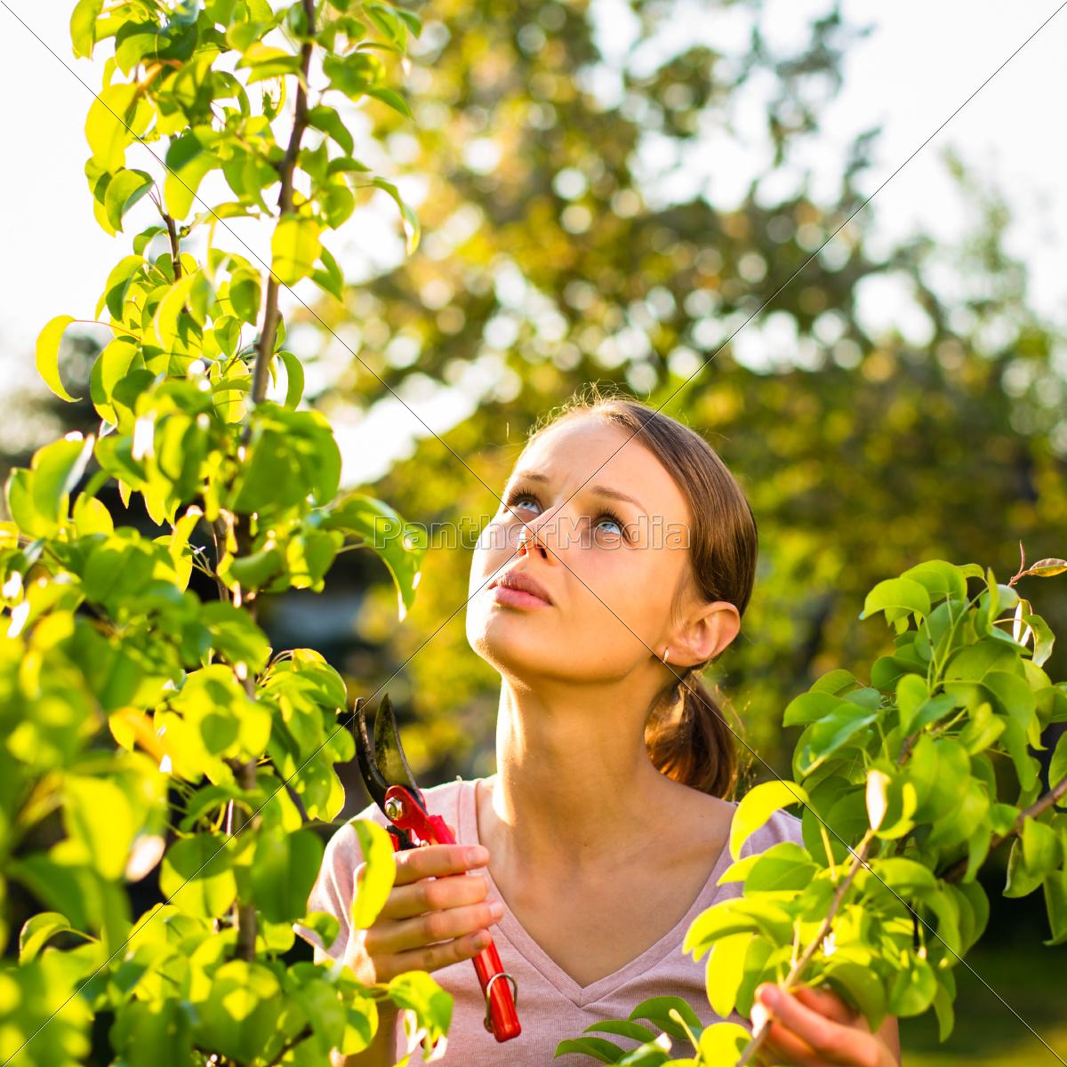 woman, female, garden, flower, plant, gardening - 10110695