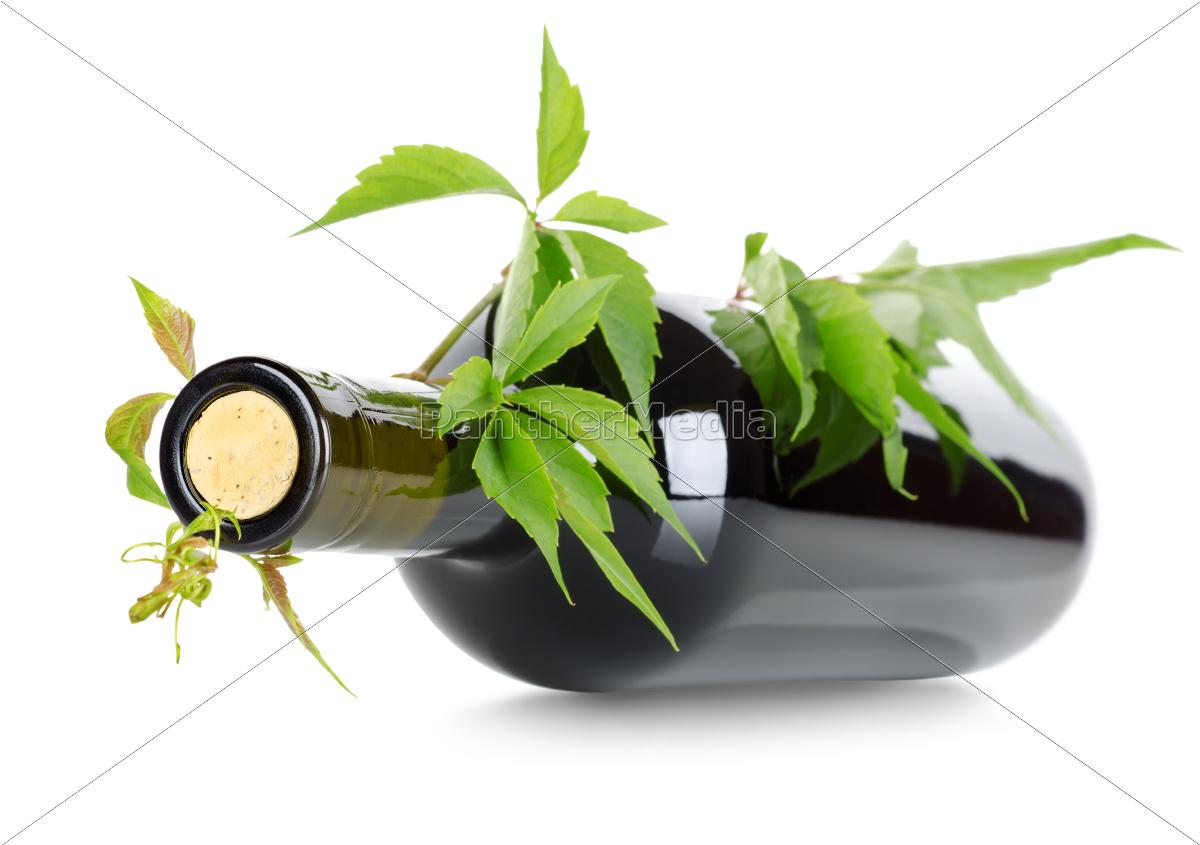 glass, chalice, tumbler, leaf, drink, drinking - 10123073