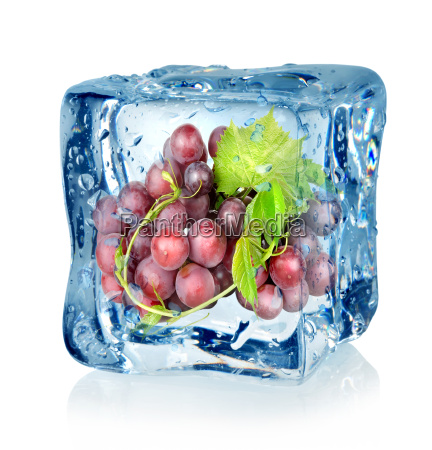 ice, cube, and, blue, grapes - 10124657