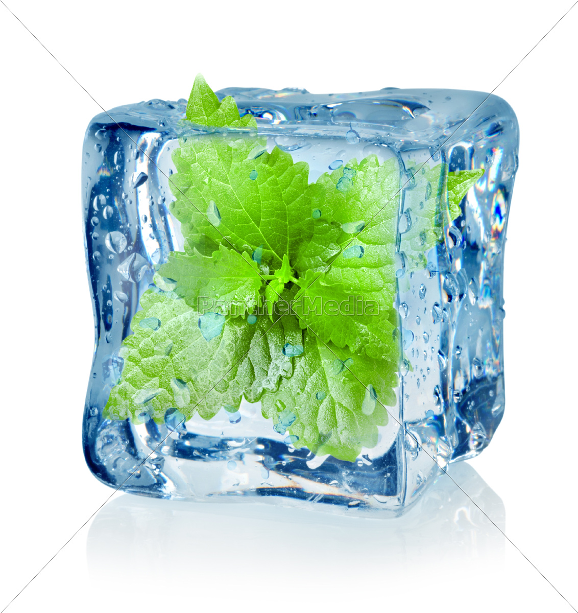 ice, cube, and, mint - 10125861