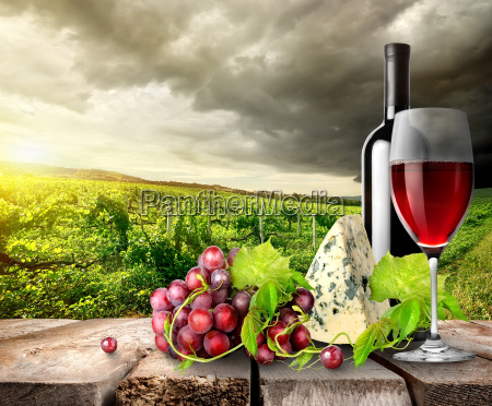 vineyard, and, wine, in, mountains - 10132017