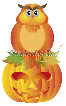 halloween, owl, sitting, on, pumpkin, illustration - 10147779