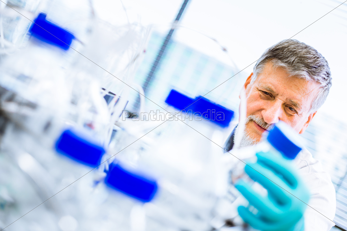 senior, male, researcher, carrying, out, scientific - 10147287