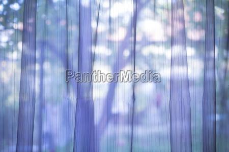 purple transparent curtain background