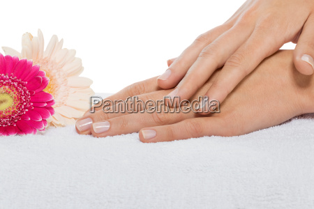 beautiful female feminine hands isolated after