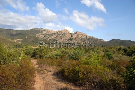 landscape in tertenia