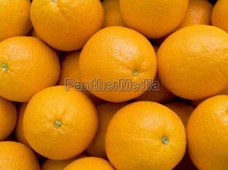 fruit oranges background