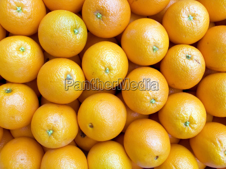 oranges background