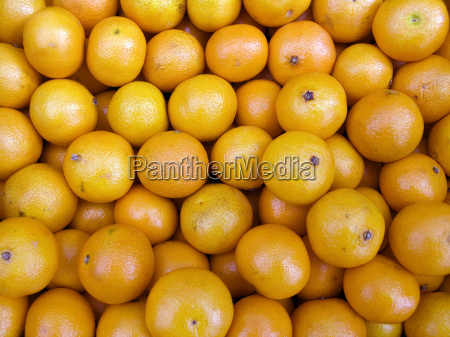 tangerines on a counter